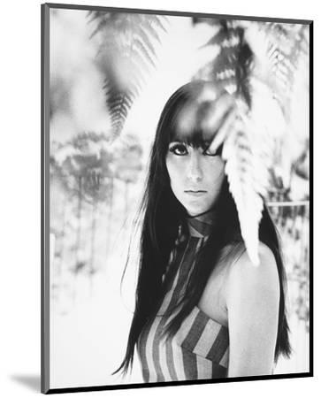 Cher--Mounted Photo