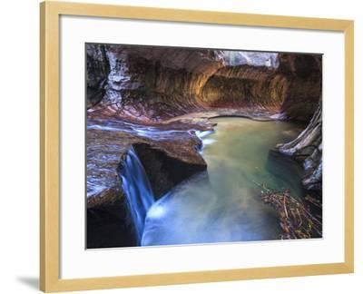USA, Utah, Zion Canyon National Park, the Subway-Michele Falzone-Framed Photographic Print