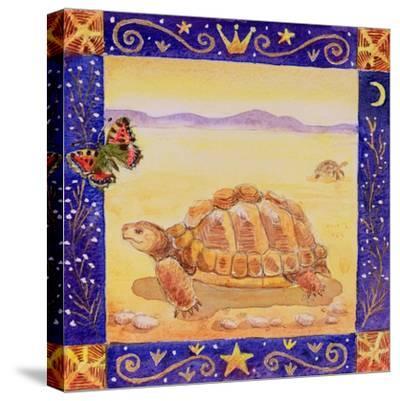 Tortoise, 1998-Vivika Alexander-Stretched Canvas Print