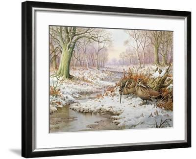Woodcock-Carl Donner-Framed Giclee Print
