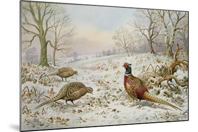 Pheasant and Partridges in a Snowy Landscape-Carl Donner-Mounted Giclee Print