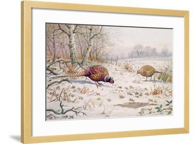 Pheasant and Partridge Eating-Carl Donner-Framed Giclee Print