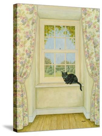 The Window Cat-Ditz-Stretched Canvas Print