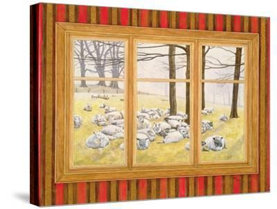 The Sheep Window-Ditz-Stretched Canvas Print