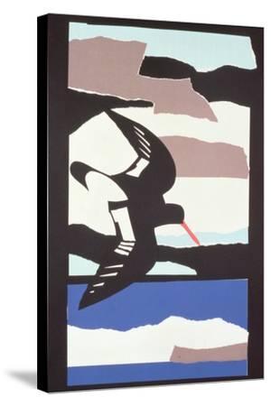 Oystercatcher-John Wallington-Stretched Canvas Print