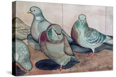Pigeons-Carolyn Hubbard-Ford-Stretched Canvas Print