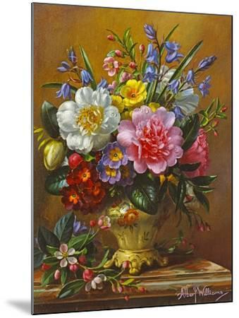 Peonies, Bluebells and Primulas-Albert Williams-Mounted Giclee Print