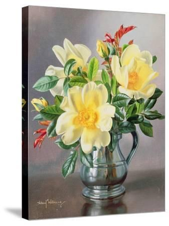 Yellow Roses in a Tankard-Albert Williams-Stretched Canvas Print