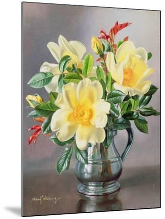 Yellow Roses in a Tankard-Albert Williams-Mounted Giclee Print