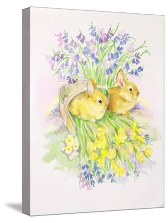 Rabbits in a Basket with Daffodils and Bluebells-Diane Matthes-Stretched Canvas Print