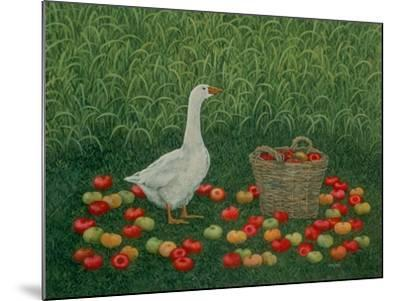 The Apple Basket-Ditz-Mounted Giclee Print