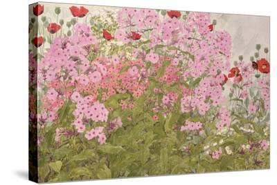 Pink Phlox and Poppies with a Butterfly-Linda Benton-Stretched Canvas Print