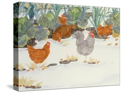 Hens in the Vegetable Patch-Linda Benton-Stretched Canvas Print