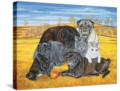 Hocking County Pug-Cats, 1995-Ditz-Stretched Canvas Print