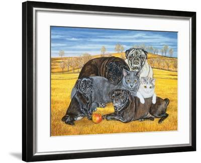 Hocking County Pug-Cats, 1995-Ditz-Framed Giclee Print