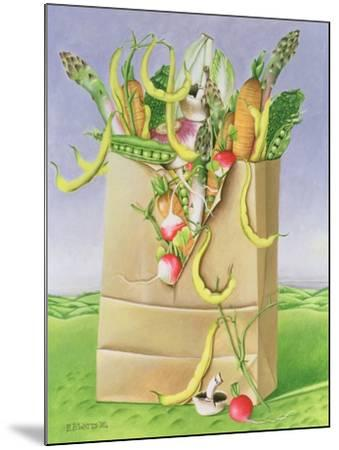 Paper Bag with Vegetables, 1992-E.B. Watts-Mounted Giclee Print