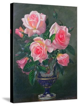 Still Life with Pink Roses in Vases-Albert Williams-Stretched Canvas Print