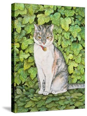 Ivy-Ditz-Stretched Canvas Print