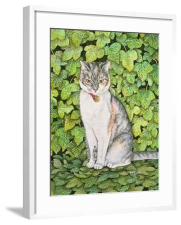 Ivy-Ditz-Framed Giclee Print