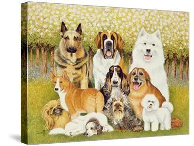 Dogs in May-Pat Scott-Stretched Canvas Print