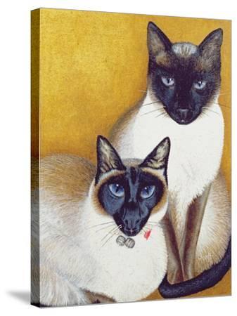 Mavis and Barnaby-Pat Scott-Stretched Canvas Print