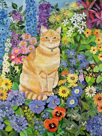 Gordon's Cat, 1996-Hilary Jones-Framed Giclee Print
