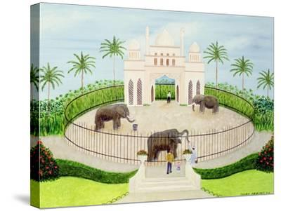 The Elephant House, 1984-Mark Baring-Stretched Canvas Print