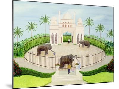 The Elephant House, 1984-Mark Baring-Mounted Giclee Print