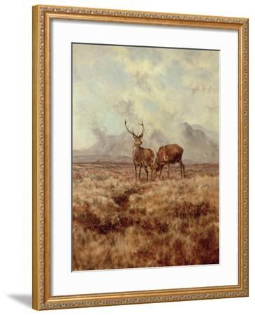 Red Stags, Ben Buie, 1982-Tim Scott Bolton-Framed Giclee Print