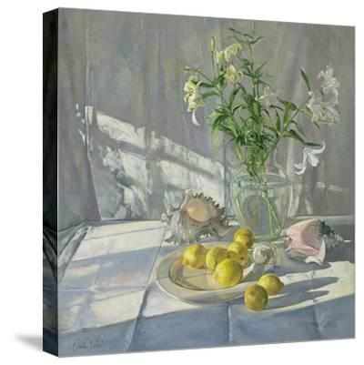 Reflections and Shadows-Timothy Easton-Stretched Canvas Print