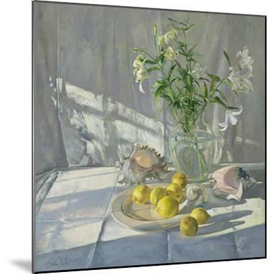 Reflections and Shadows-Timothy Easton-Mounted Giclee Print