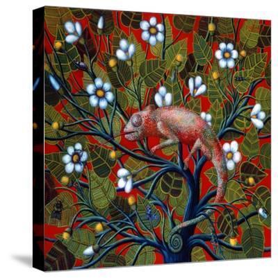 Big Chameleon, 1997-Tamas Galambos-Stretched Canvas Print