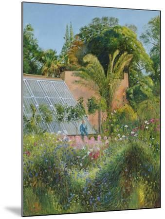 Cornflower Waves at Heligan-Timothy Easton-Mounted Giclee Print