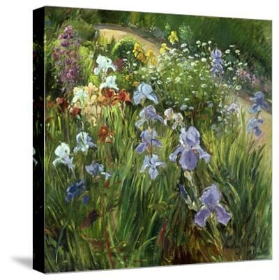 Irises and Oxeye Daisies, 1997-Timothy Easton-Stretched Canvas Print