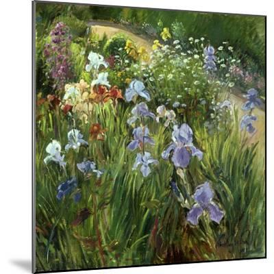 Irises and Oxeye Daisies, 1997-Timothy Easton-Mounted Giclee Print