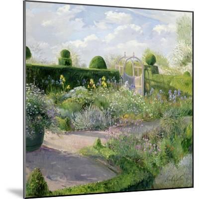 Irises in the Herb Garden, 1995-Timothy Easton-Mounted Giclee Print
