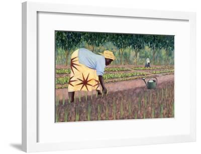 Planting Onions, 2005-Tilly Willis-Framed Giclee Print