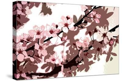 Japanese Blossom-Sarah O'Toole-Stretched Canvas Print