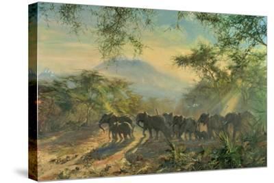 Elephant, Kilimanjaro, 1995-Tim Scott Bolton-Stretched Canvas Print