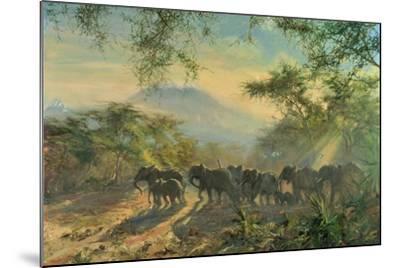 Elephant, Kilimanjaro, 1995-Tim Scott Bolton-Mounted Giclee Print
