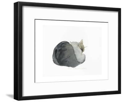 Sleeping Cat, 1985-Claudia Hutchins-Puechavy-Framed Giclee Print