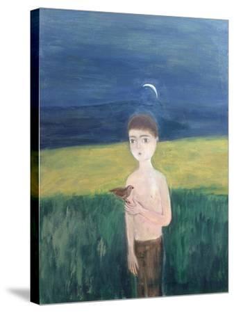 Boy with Bird, 2002-Roya Salari-Stretched Canvas Print