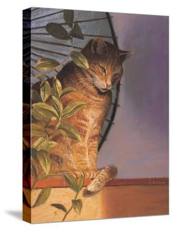 Contemplation-Simon Cook-Stretched Canvas Print