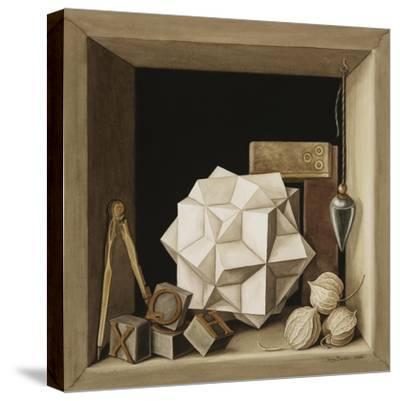Geometry, 2004-Jenny Barron-Stretched Canvas Print