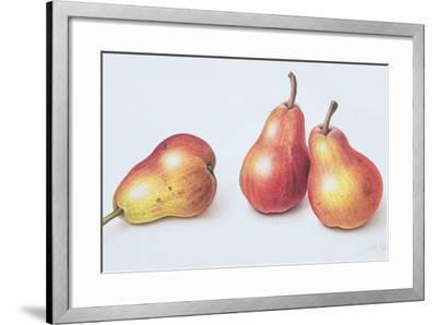 Red Pears, 1996-Margaret Ann Eden-Framed Giclee Print