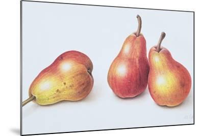 Red Pears, 1996-Margaret Ann Eden-Mounted Giclee Print