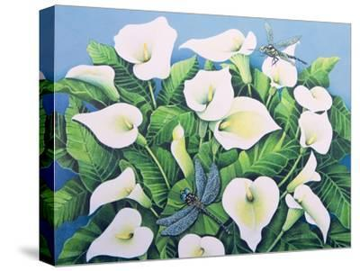 Dragon Flies-Pat Scott-Stretched Canvas Print
