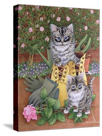 Garden Helpers-Pat Scott-Stretched Canvas Print