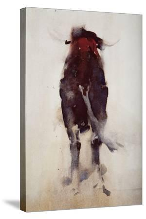 Bull, Detail-Daniel Cacouault-Stretched Canvas Print