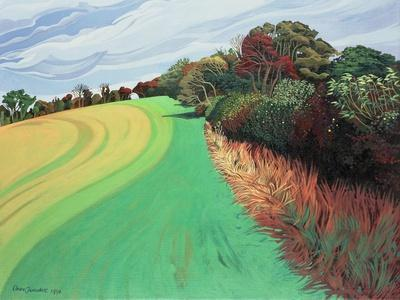 Little Solsbury Hill, Bath, 1994-Anna Teasdale-Stretched Canvas Print